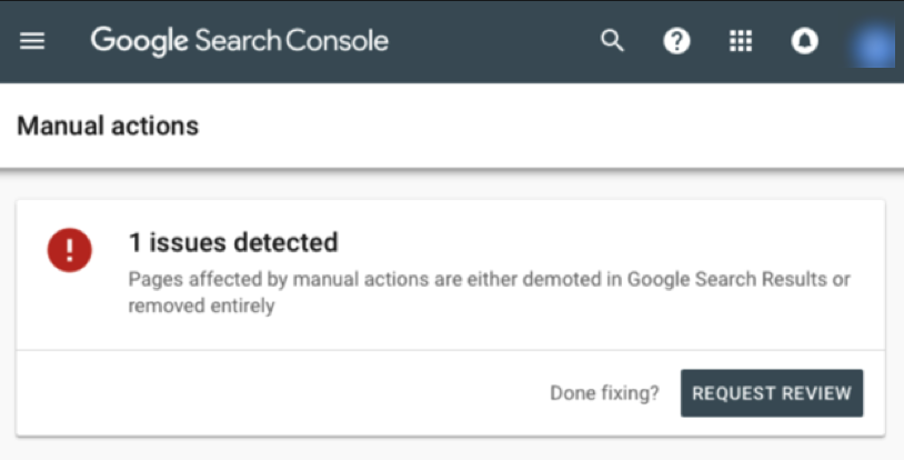 Screenshot of Request Review for Google manual action